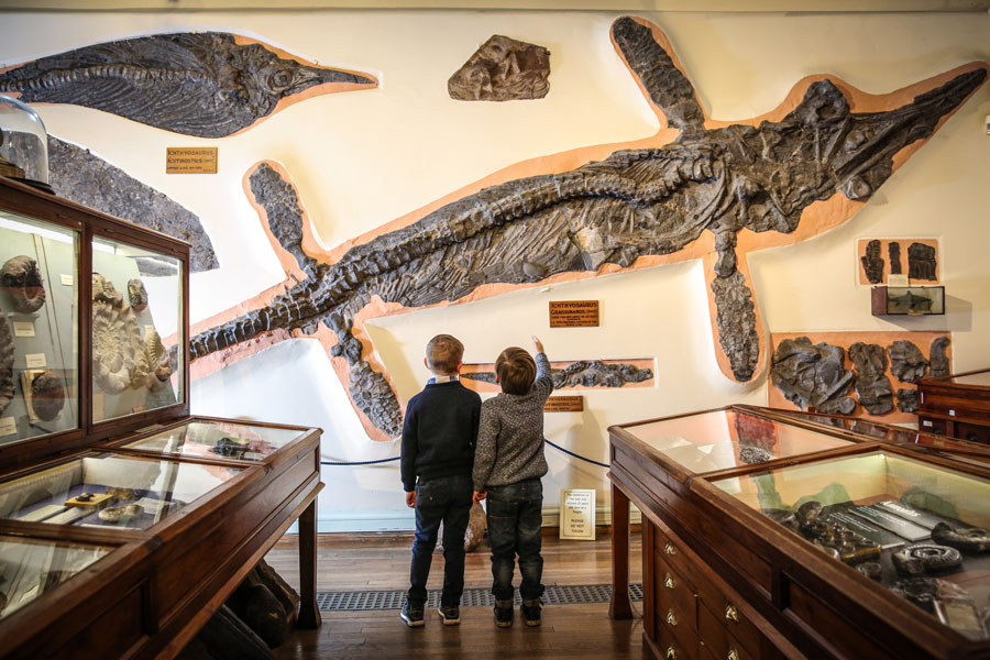 Two young boys explore Whitby Museum
