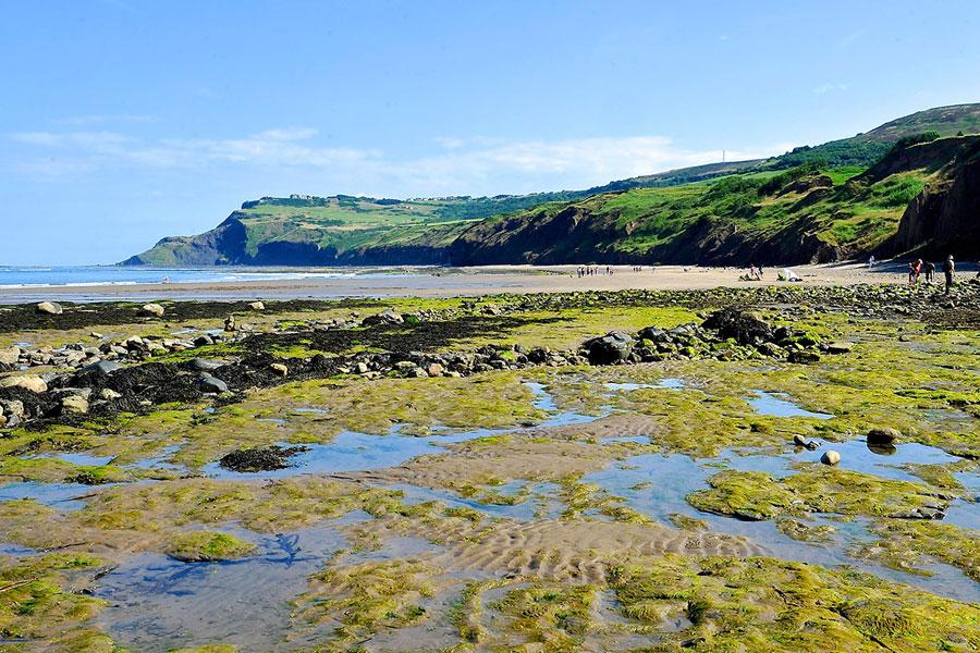 Yorkshire coastline