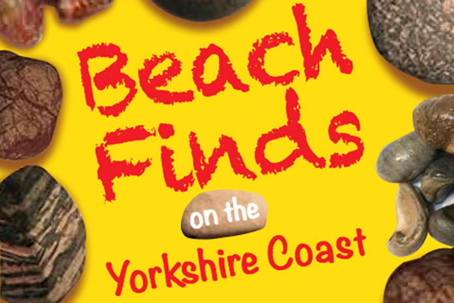 Beach Finds on the Yorkshire Coast