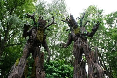 Tree stilt walkers set to appear at Yorkshire Fossil Festival