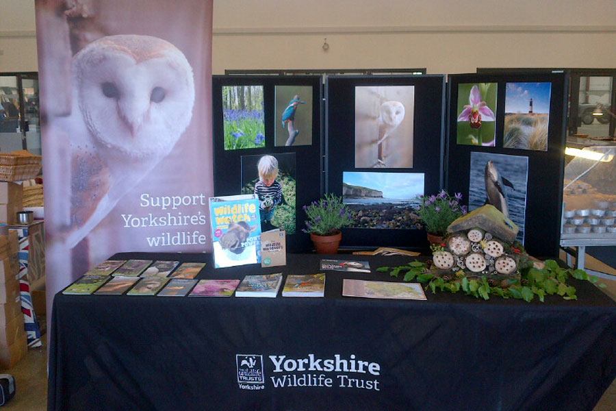 A display from the Yorkshire Wildlife Trust